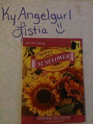 Nip sunflower seeds