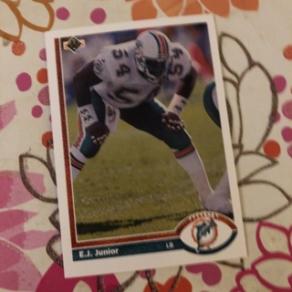 Miami Dolphins Cards