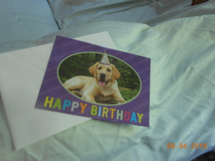 Gender Neutral  Purple Birthday Card with Golden Retriever wearing a party hat