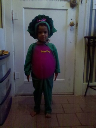 3T Baby Bop Dinosaur Costume from Barney Show