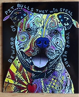 """PIT BULLS WILL STEAL YOUR HEART - 4 x 3"""" MAGNET"""