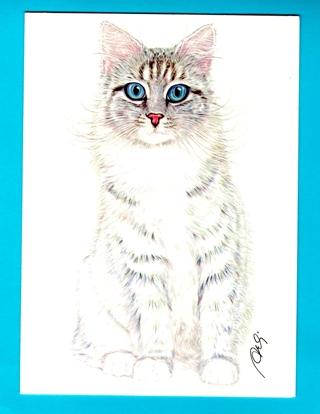 Embossed BLUE EYES CAT unused Greeting Card NEW!