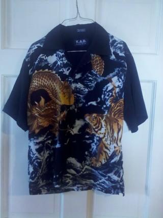Boys 10/12 tiger and dragon button down shirt