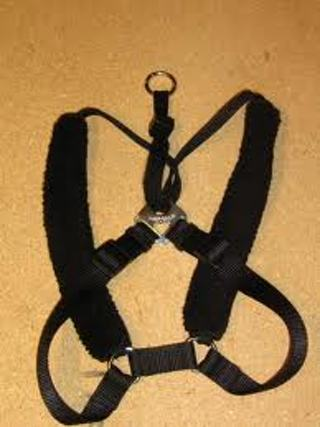 sure pet dog harness instructions