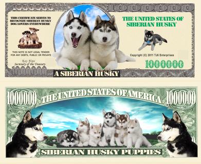 Siberian Husky Million Doggie Bones Dollar Bill Collectible Funny Money Novelty Note, OR Your Choice