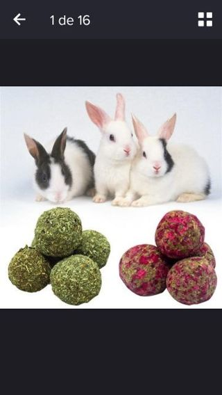3 pets snack ball pet rabbit