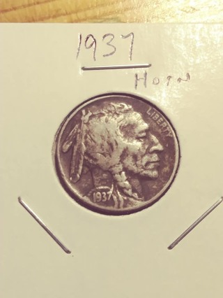 1937 Buffalo Nickel with Horn! 6