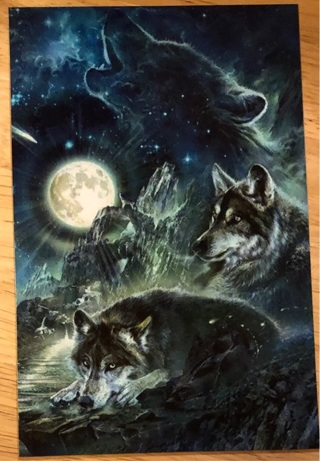 """WOLF COLLAGE - 4 x 5"""" MAGNET"""