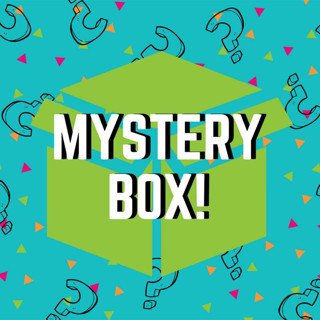HUGE Media Mail Mystery Box OVER 20 Items!