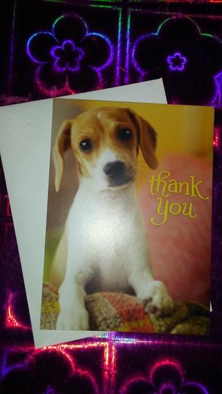 Adorable puppy Thank-you card-⬅⬅⬅☺☺☺⭐⭐⭐⭐☝☝☝☝☝☝☝☝