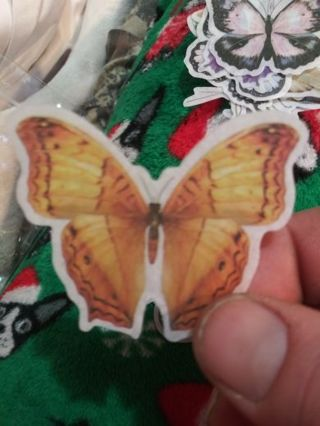 Deco thin butterfly scrapbook sticker No refunds! Good quality! Lowest gins always bonus!