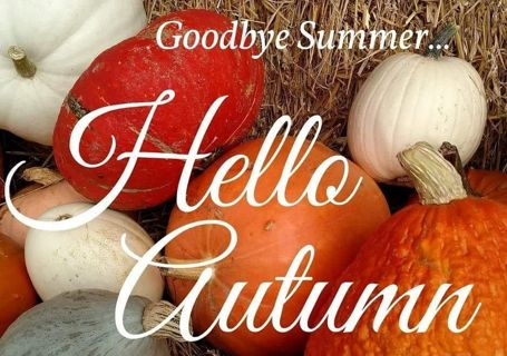 Hello Autumn Growing auction! Clothes, shoes, accessories, misc... ❤❤❤❤
