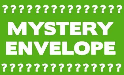Brand New Charm/Pendant Semi- Mystery Auction
