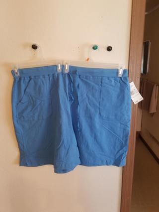 Limited Edition SZ 3x Stretch Shorts BNWT