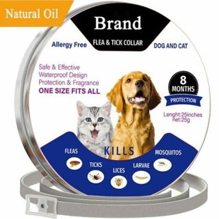 Dog Cat Anti Lice Flea Mite Tick Adjustable Collar Anti Mosquitoes Kill Parasite