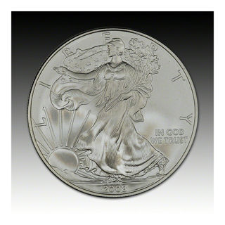 2008-W American Silver Eagle in Government Packaging