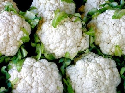 12 plus Snowball Cauliflower seed.