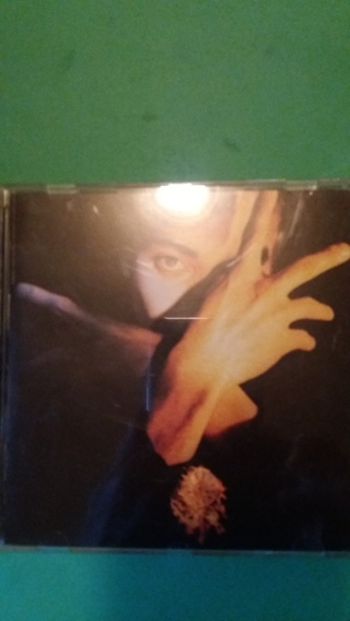 cd  terence trent d arby s neither fish nor flesh  free shipping