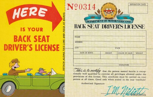 Vintage Unused Postcard: Back Seat Driver's License