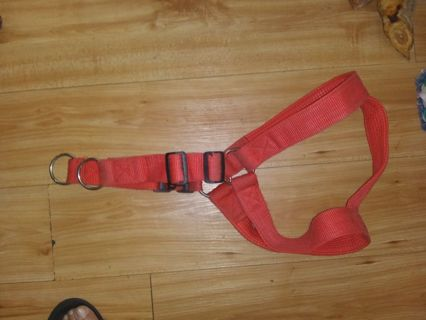 Collar for large breed