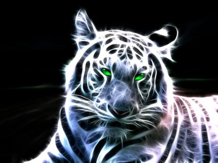 Free Spectral Looking White Tiger Desktop Background