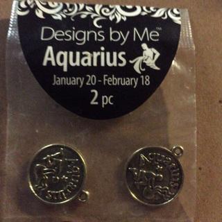 Aquarius charms