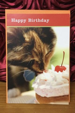 Happy Birthday Cat Licking Cake Card