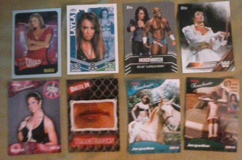 8 card divas knockouts womans lot insert