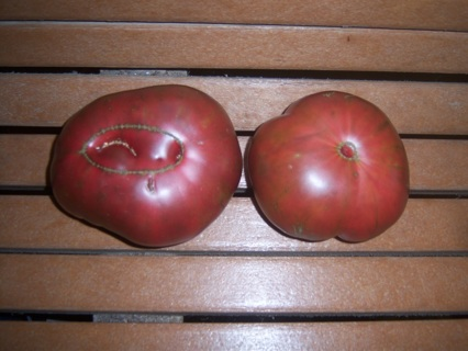 25 Cherokee Purple Tomato Seeds