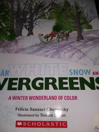 Sugar White Snow and Evergreens; A Winter Wonderland of Color