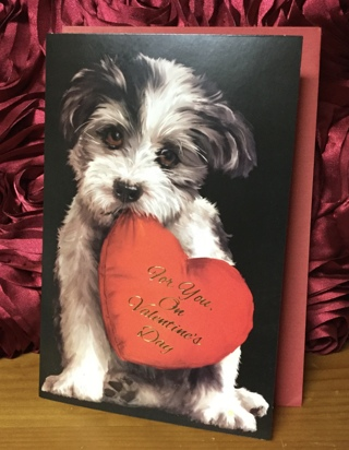 For You on Valentine's Day Puppy Holding Heart(with envelope)