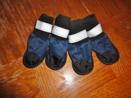 Blue doggie boots