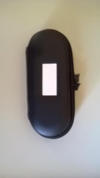 small vapor case