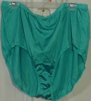 37a8194b3 Free  New Hanes Teal Plus Size 13 Panties