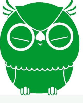 ♡♡♡ 1 HOOT OWL ,GREEN DECAL ,VINYL, BUMPER STICKER..NEW♡♡