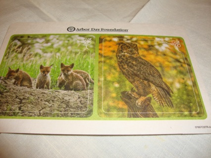 Bird: Owl and Wolf Pups ~ New Arbor Day Foundation Coasters ~ Free Shipping
