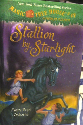 Magic Tree House..Stallion by Starlight  Reading book