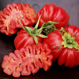 8 plus Zapotec Ruffled Tomato seed...