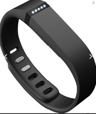 Fitbit Flex ~Free Shipping ~
