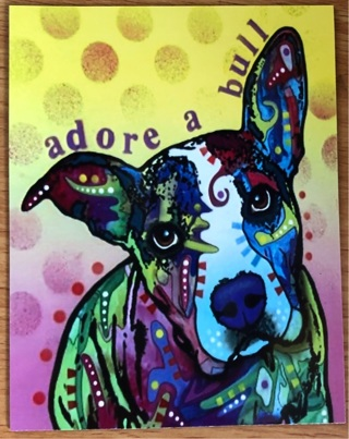 "Pit Bull - Adore a bull!  - 3 x 5"" MAGNET"