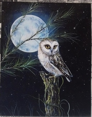 """OWL WITH MOON!! - 3 x 4"""" MAGNET"""