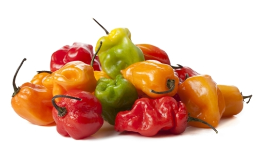 Habanero Peppers - Rainbow or Multicolor Mix - 20 Seeds