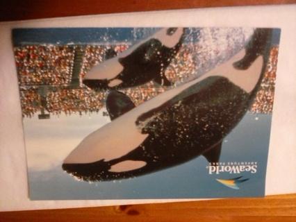 Seaworld postcard