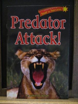 Predator Attack! - Paperback Book