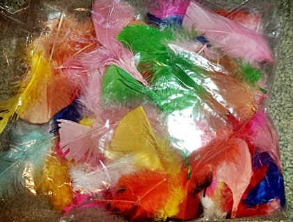 Feathers - Assorted Colors