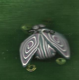 Cute litttle Bug