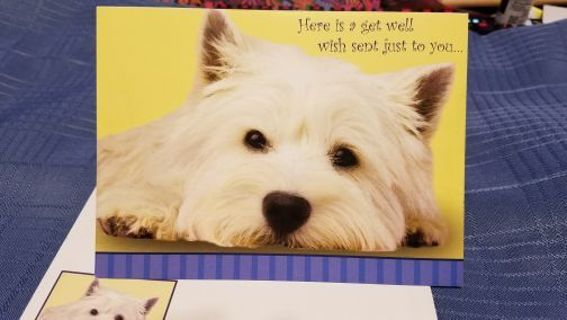 ADORABLE PUP WISHES TO GET WELL CARD W/ MATCHING ENVELOPE