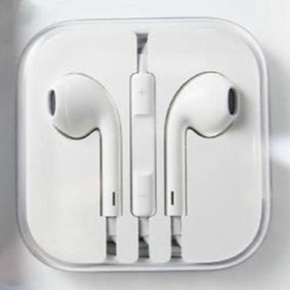 New iPhone Earbuds w/Mic