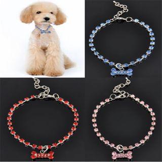 """Dog Necklace"", Blue Crystal Bone Jewelry P/N !"