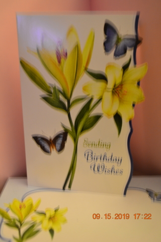 "***BEAUTIFUL BLUE CARD WITH BLUE BUTTERFLIES ""BIRTHDAY CARD"" W/MATCHING ENVELOPE***FREE SHIPPING"